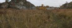 high grass rocks
