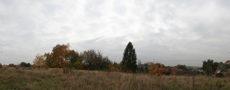 landscape autum clearing